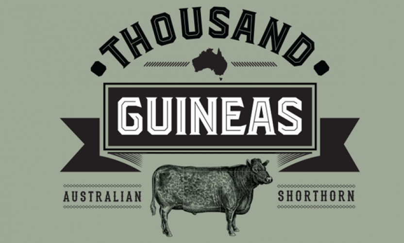 'Thousand Guineas' JBS Shorthorn Brand Launched